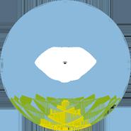 logo_fiorot